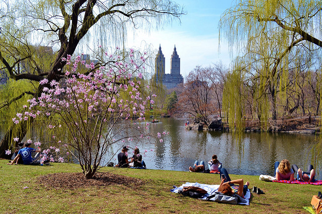 What Smart Mayors Can Learn from the Turnaround of Central Park